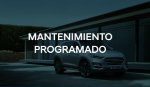 Mantenimiento Programado